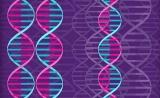 GWAS十年综述:从生物学功能到转化医学的发展