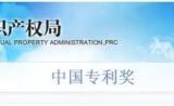 一文初识:近年来药学领域获得的中国专利奖