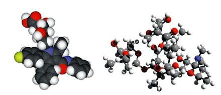 自动加氟的大肠杆菌助理药物开发