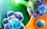 Nanomedicine:健康所发现纳米材料可调节多巴胺神经元分化