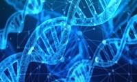 白春禮代表:基因編輯技術研發不能因噎廢食,叫停一切有違科學精神
