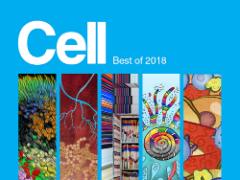 Cell重磅发布:2018年十大最佳论文/综述出炉