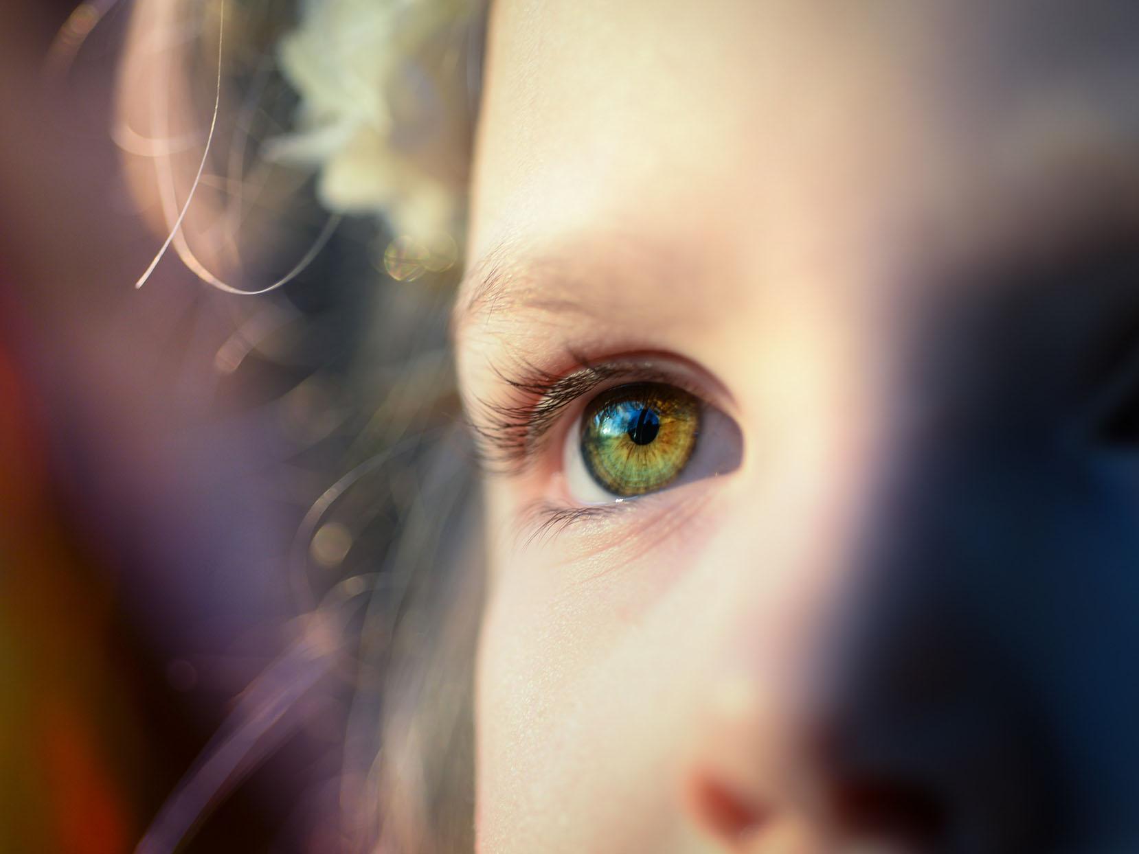 """干细胞移植治疗失明再添""""新路""""!科学家发现,这类新型细胞可恢复猴子视网膜功能"""