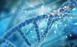 英科学家发现27种能抑制癌症的新基因!