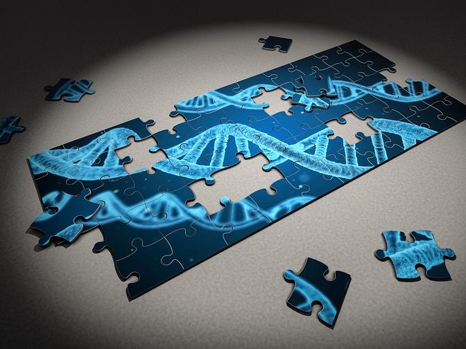 Science:端粒长度与性别、种族和慢性病相关,且因人体组织类型而异!