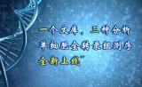 一个文库,三种分析,单细胞全转录组测序全新上线~