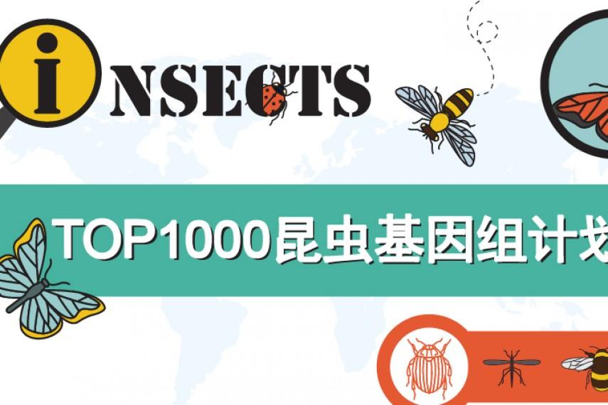 安诺Hi-C助力千种昆虫基因组计划