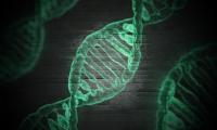 中国基因测序仪往事