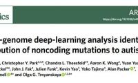"""變廢為寶!Nature子刊:人工智能 從""""垃圾""""DNA中發現自閉癥的新病因"""