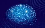Nature:进击的AI!这次它竟然模拟了脑导航…...