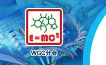 2013第四届国际药物化学大会