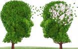 久坐不动易患阿尔茨海默病