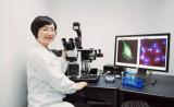 中科院学者最新Cell文章:长非编码RNA的新调控作用
