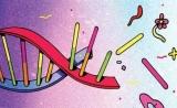一次失败的实验助他摘得诺奖,还让转基因、基因编辑得以实现