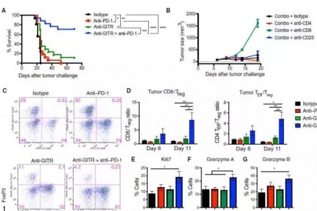 Science Immunology:狙击肿瘤,PD-1与GITR抗体联用竟有事半功倍之妙!