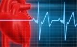 中国学者研发出新型心脏补片