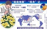 上海嘉定:生物医药研发外包服务加速器筹备成立