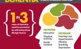 柳叶刀:这9种生活方式,或可预防老年痴呆