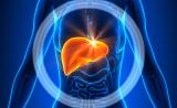 中国科学家发现肝癌发病新机制,三到四成的成年人受其危害
