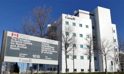 """被""""休假""""!加拿大情报部门将华裔科学家邱香果带离国家微生物实验室"""