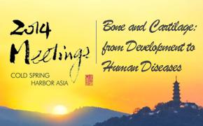 2014年冷泉港亚洲会议:Bone and Cartilage