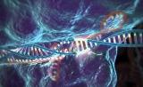 基因编辑CRISPR-Cas9研究获新成果