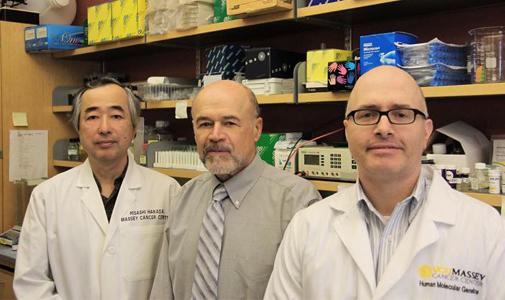 """Cancer Research:休眠肿瘤很狡猾,先进入衰老状态再""""爆发"""