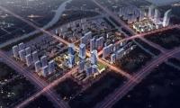 湾区云招商!聚焦生命健康,宁波杭州湾新区强势崛起