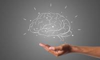 """PNAS:""""高学历""""也无法延缓大脑衰老?但仍具有其他益处"""