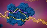 """2019年全球十大基因编辑公司,CRISPR""""三大先驱""""都入选"""