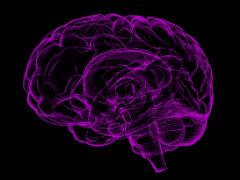 幼儿麻醉会影响大脑发育吗?迄今最有力证据发表