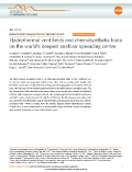 Hydrothermal vent fields and chemosynthetic biota on the world's deepest seafloor spreading centre