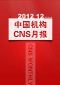 中国机构CNS月报(2012年12月刊)