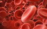 Cell子刊:不止是骨髓,肠道中也有造血干细胞