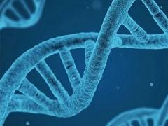新研究破解癌症扩散之谜,或为基因驱动使然