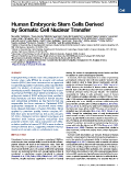 Human Embryonic Stem Cells Derived by Somatic Cell Nuclear Transfer