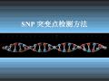 SNP突变点检测方法(PPT)