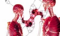 Cancer:TACE聯合索拉非尼延長晚期肝癌患者壽命