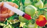 全球转基因市场深度洞察,种植面积近20年增长110倍
