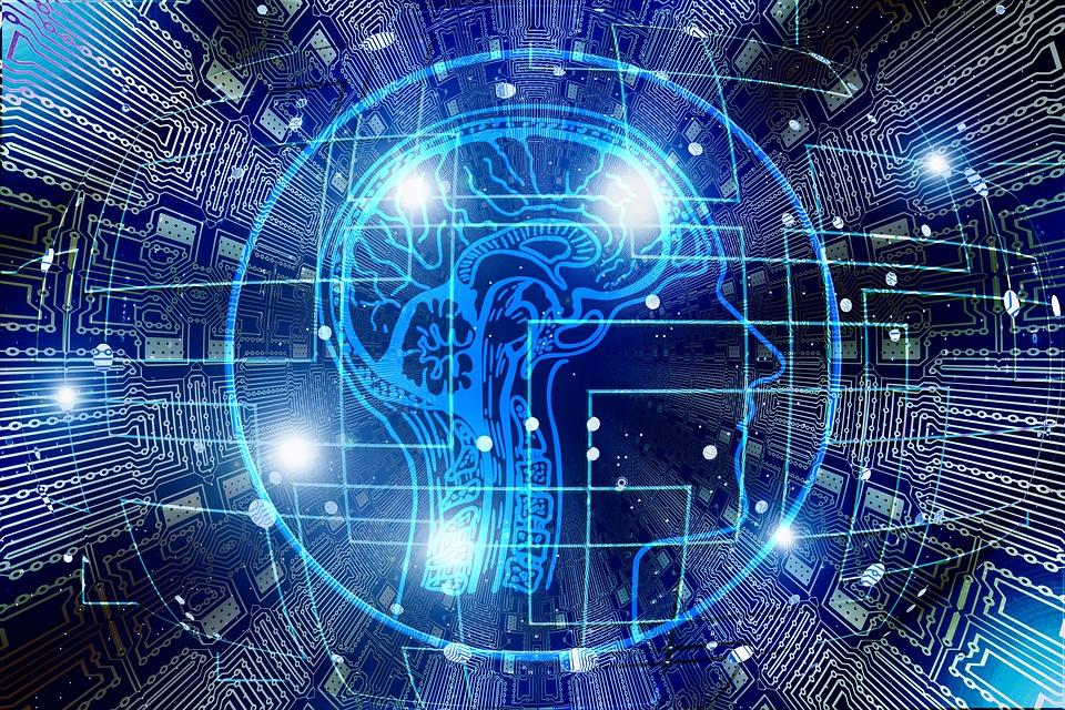 Cell子刊:迟发性AD的第二大危险因素BIN1蛋白,也是影响大脑空间记忆整合的关键!