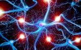 人体临床试验汇总!间充质干细胞治疗神经退行性疾病,结果喜人
