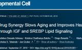 Cell子刊:延长近一倍!组合用药可显著增加寿命