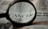 如何阻止癌细胞转移?PNAS出妙招:抑制溶酶体