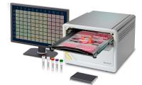 赛多利斯推出新型IncuCyte® SX5 活细胞分析系统,为活细胞分析实验提供了新的可能性