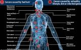 北京癌症数据播报:男性恶性肿瘤新发病例肺癌居第一,女性乳腺癌发病居第一位