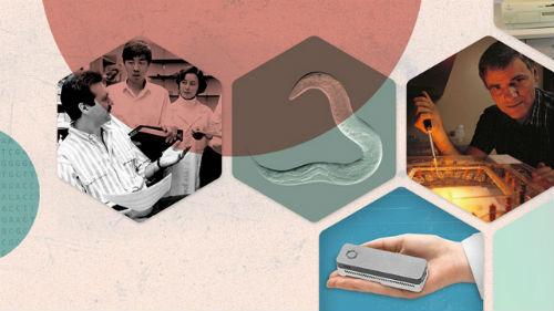 The Scientist:生命科学30年的进步(基因编辑、干细胞、DNA测序、脑成像……)