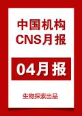 中国机构CNS月报(2013年4月刊)