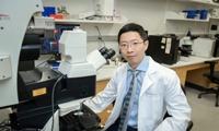 吴思涵国内首场肿瘤ecDNA学术报告 深度揭秘半个世纪ecDNA的研究成果及突破性进展