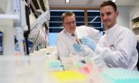"""Nature子刊:新型T细胞的发现或将使""""通用""""癌症治疗成为可能!"""