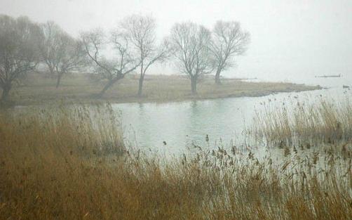 【世界湿地日】环境污染对3类人伤害更大